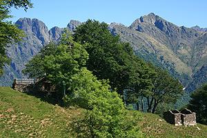 nationalpark val grande reisef hrer lago maggiore lago. Black Bedroom Furniture Sets. Home Design Ideas